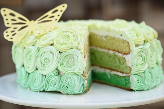 amy atlas cake green butterfly spring
